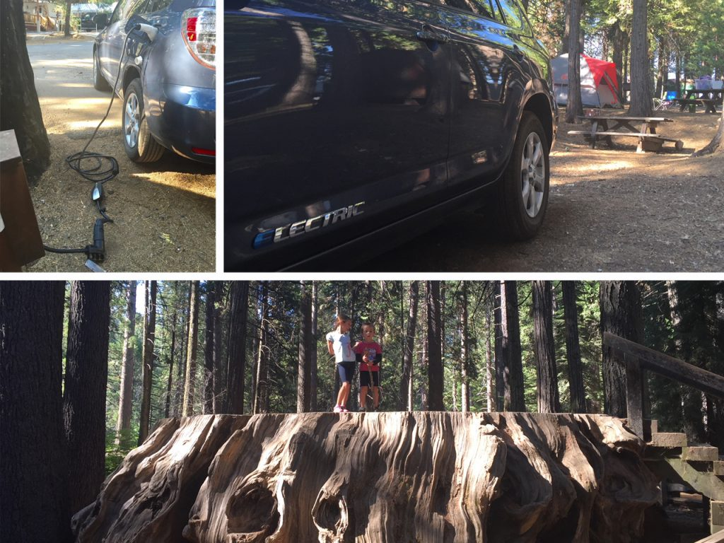 Camping at an RV park near Calaveras Big Trees state park. Many RV parks have electric outlets that can charge EVs... with the right adapter. The Big trees are impressive, thank goodness we don't cut them down now just because.